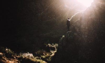 Ikigai: coltivare la propria ragione di vivere