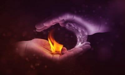 La curiosità: la forza grande del Tao