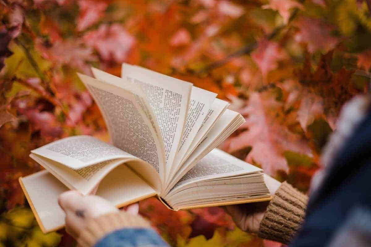 Non temere lo spoiler: leggere il finale prima della fine