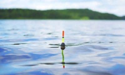 Pescare richiede pazienza